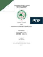 Informe de Organica 4