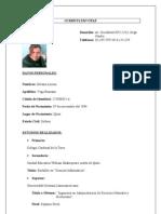 Curriculum Vitae Lorena