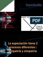 especiacion