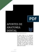 Apuntes de Anatomia Dental Dr. Dandelion