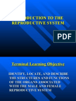 Pp03l040_introduction to the Reproductive System