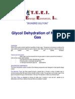 TERI Glycol DEHY Brochure