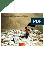 desigualdadesdedesenvolvimento-100519054620-phpapp01