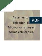 to y Seleccion de Materiales -Word