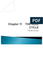 Chapter 11_The Cell Cycle