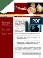 patente techo baul
