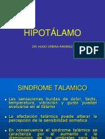 HIPOTALAMOtrabnajop