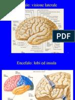14- Rt Nei Tumori Cerebrali - Def