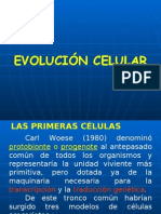 EvolCell06