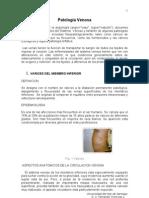 Patología Venosa