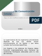 68273755 Procesos de Comunicacion Celular Tsb i