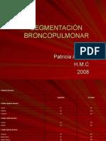 SEGMENTACION BRONCOPULMONAR