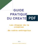 Guide Pratique Du Createur 2009.24540