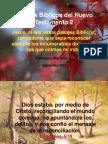 Pasajes Bíblicos del Nuevo Testamento 2