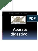 EMBRIOLOGIA APARATO DIGESTIVO