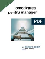 Automotivarea Pentru Manager
