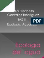 Ecologia Del Agua