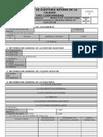 Informe de Auditoria Interna de La Calidad Tipo Conform Id Ad
