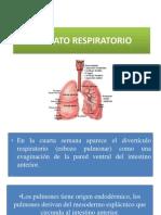 APARATO RESPIRATORIO 2