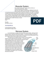 bodysystemssummarieseric word