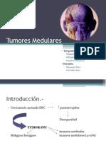 tumores medulares