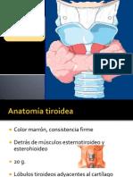 tiroides PARA DR CASTAÑEDA