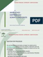 Proceso Asistencial Ansiedad Depresion Somatizaciones