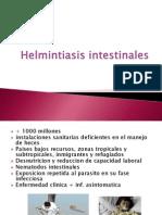2. HELMINTIASIS (TRATAMIENTO)