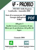 Analisi Tecnico Economica Pellet 2004