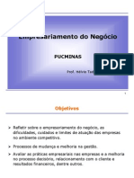 428912_Transparência - empresariamento do negócio - PUCMINAS (1)