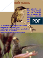El Picaflor y El Cuervo