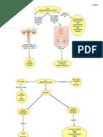 Reproduccion PDF
