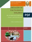 trabajofinalexporthass-100713143254-phpapp02