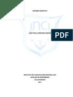 Trabajo de Investigacion Del Sistema Digestivo Judi Paola Sanchez Final