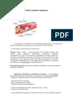 Tecido conjuntivo sanguíneo