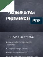 Presentazione elettorale CPS 2011-13