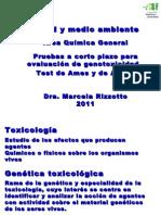 Salud_amb2011-9