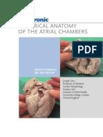 Atrial Anatomy Anderson!!
