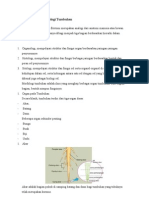 Anatomi Dan Morfologi Tumbuha1