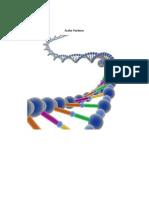 Ácidos Nucleicos  TERMINADO