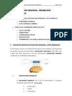 Fisiologia Sensorial Sensibilidad Somatoestesica