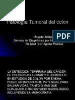 Clase PatologÍa Tumoral Del Colon