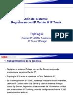 13_IP Trunk&IP Carrier