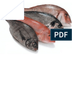 Oxidación de grasas en pescados 2