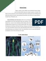 Pengertian Sistem Imun 1