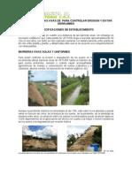 Barreras Vivas de Vetiver Para Controlar Erosion y Evitar Derrumbes