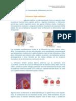 Farmacologia de La ion