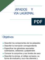 parpados-y-via-lagrimal (1)