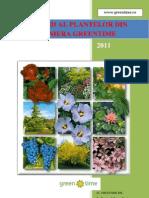 brosura arbori ornamentali