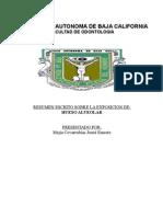 HUESO ALVEOLAR - Presentacion Josue
